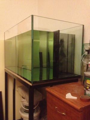 аквариум 019.jpg