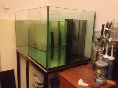 аквариум 017.jpg