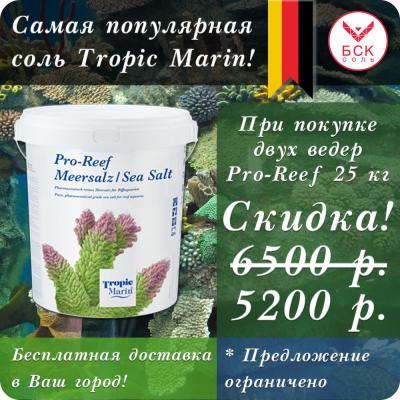 Распродажа про риф 10 кг 1000.jpg