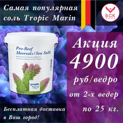 post-11084-0-64083300-1588151253_thumb.p