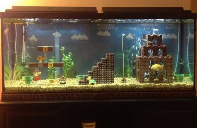 super-mario-aquarium-1.jpeg