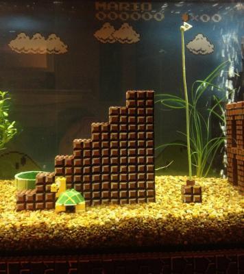 super-mario-aquarium-3.jpeg