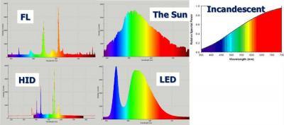 spektr.jpg