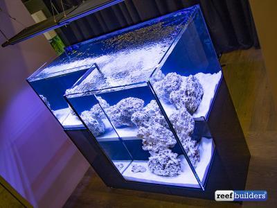 drop-aff-tank-aquarium-ifalos-11.jpg