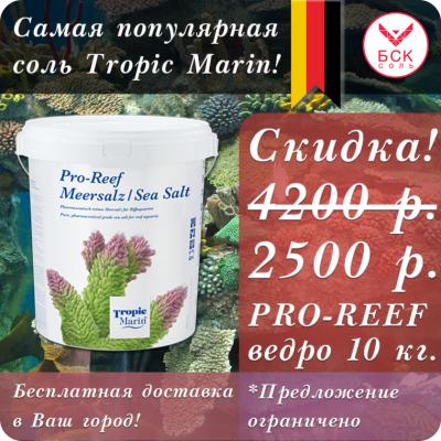 post-11084-0-98592600-1594717528_thumb.p