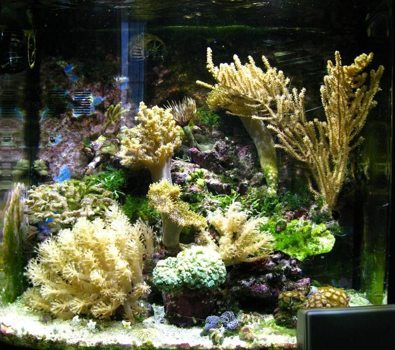 DIY - LED светильник для аквариума. Светодиодный светильник для аквариума своими руками.