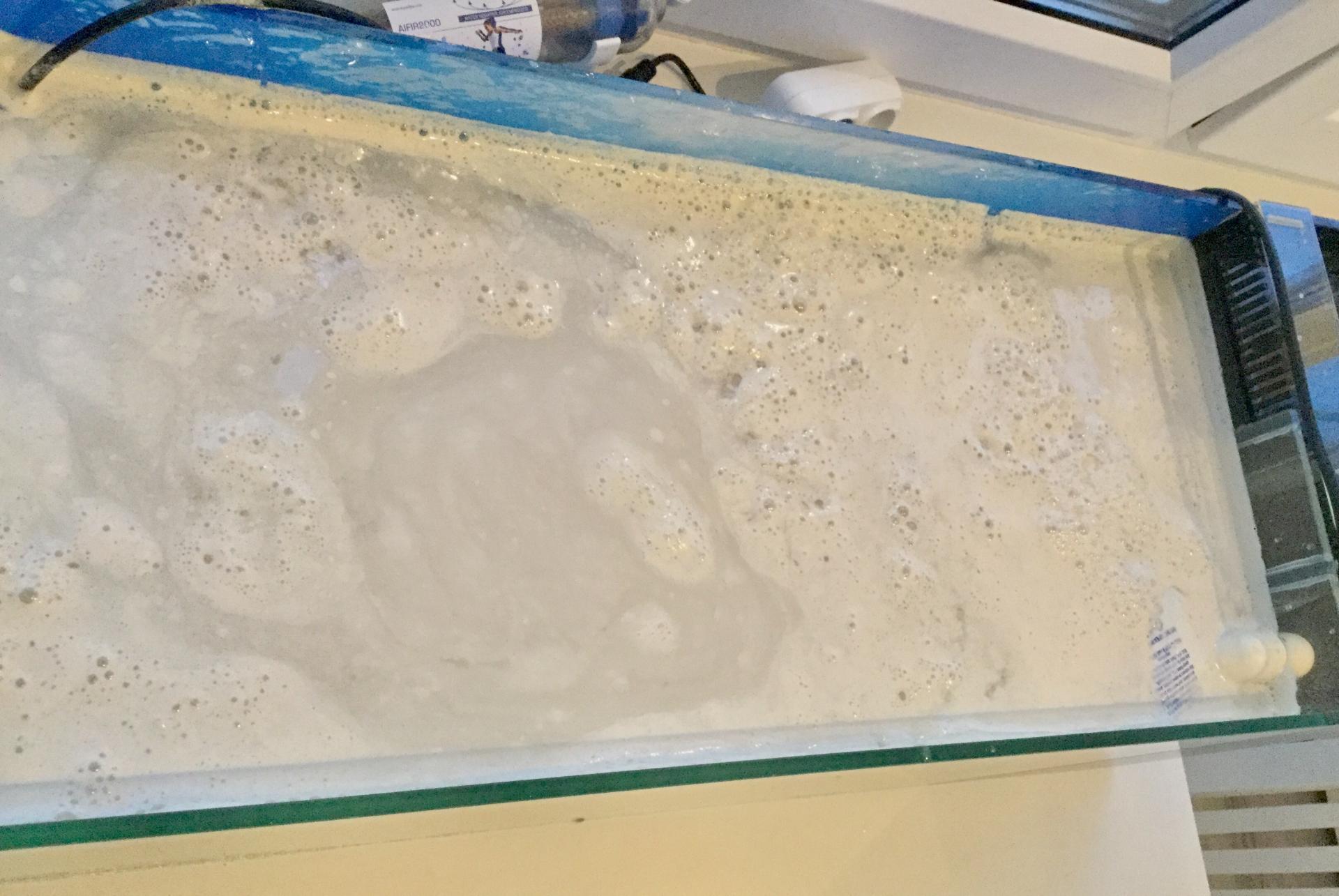 Купить мелкий песок posting ризоторфин для сои купить в Ижевске