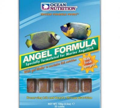 AngelFormula1X555X498X.jpg