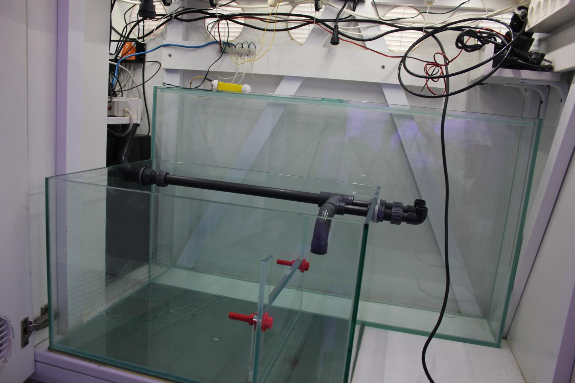 Автодолив воды в аквариум своими руками 26