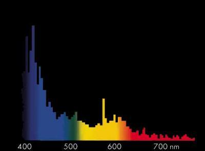 Spektralvert.Megachr.Coral.jpg