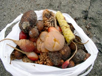Sea food Karpovka Oct23-04.jpg