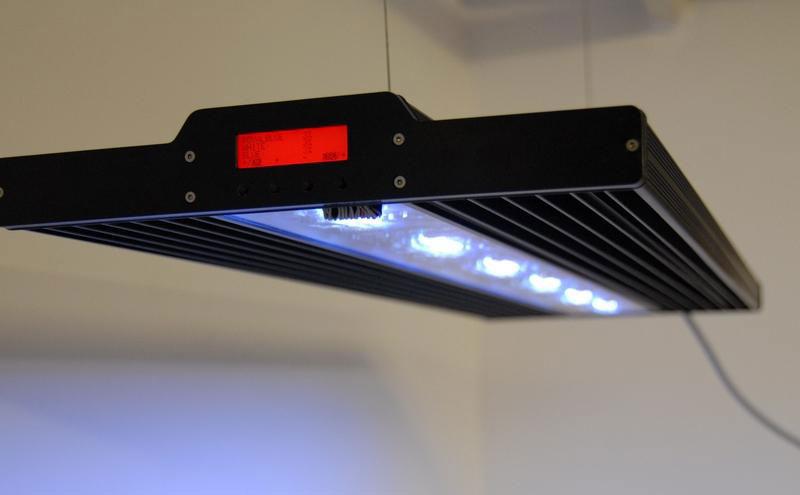 vertex-lumina-led-fixture.jpg