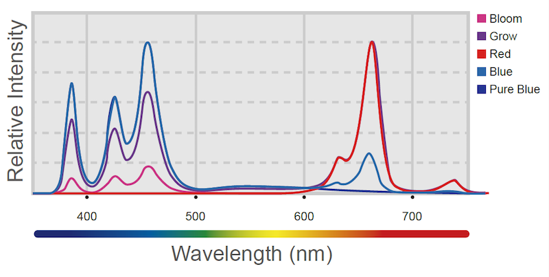 H80-Spectrum-graph.png