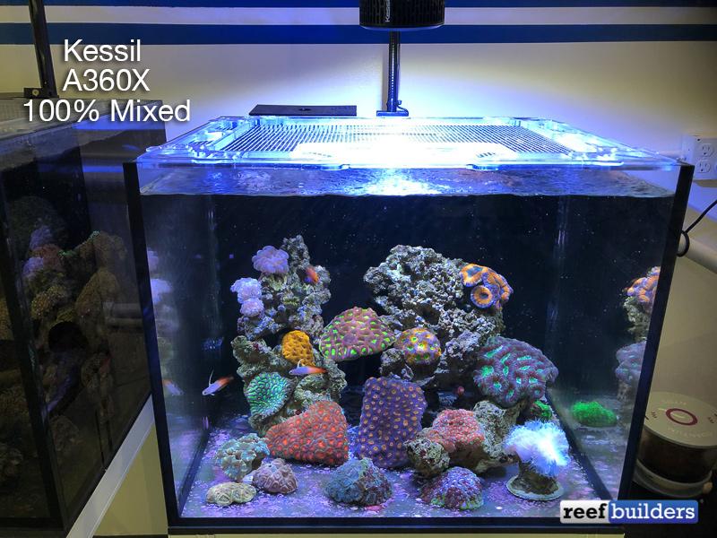 kessil-a360x-mixed-3.jpg