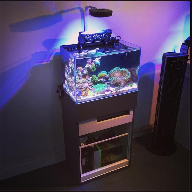 artero-aquarismo-multi-stand-2.jpg