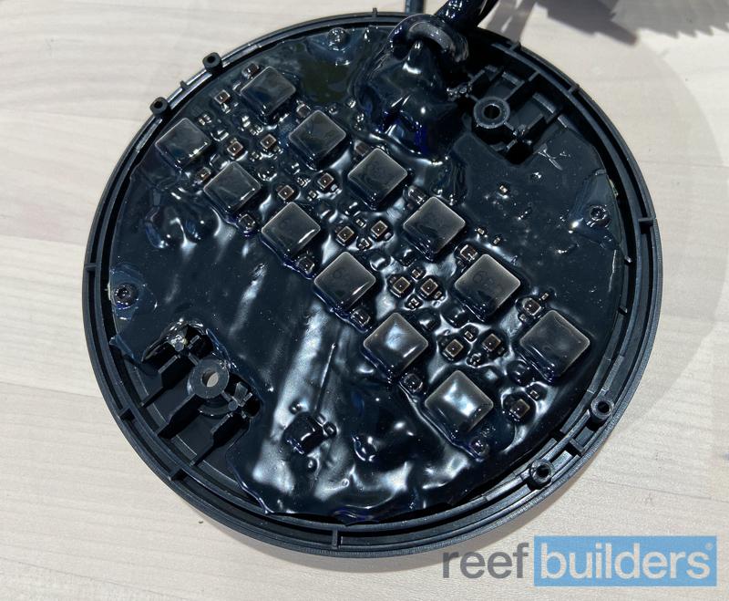 kessil-a500x-led-spotlight-8.jpg
