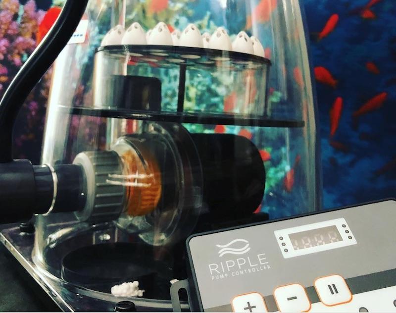 ripple-needle-wheel-dc-pump-3.jpg